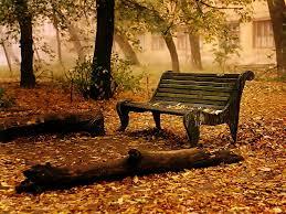 Photo of O outono chegou em mim