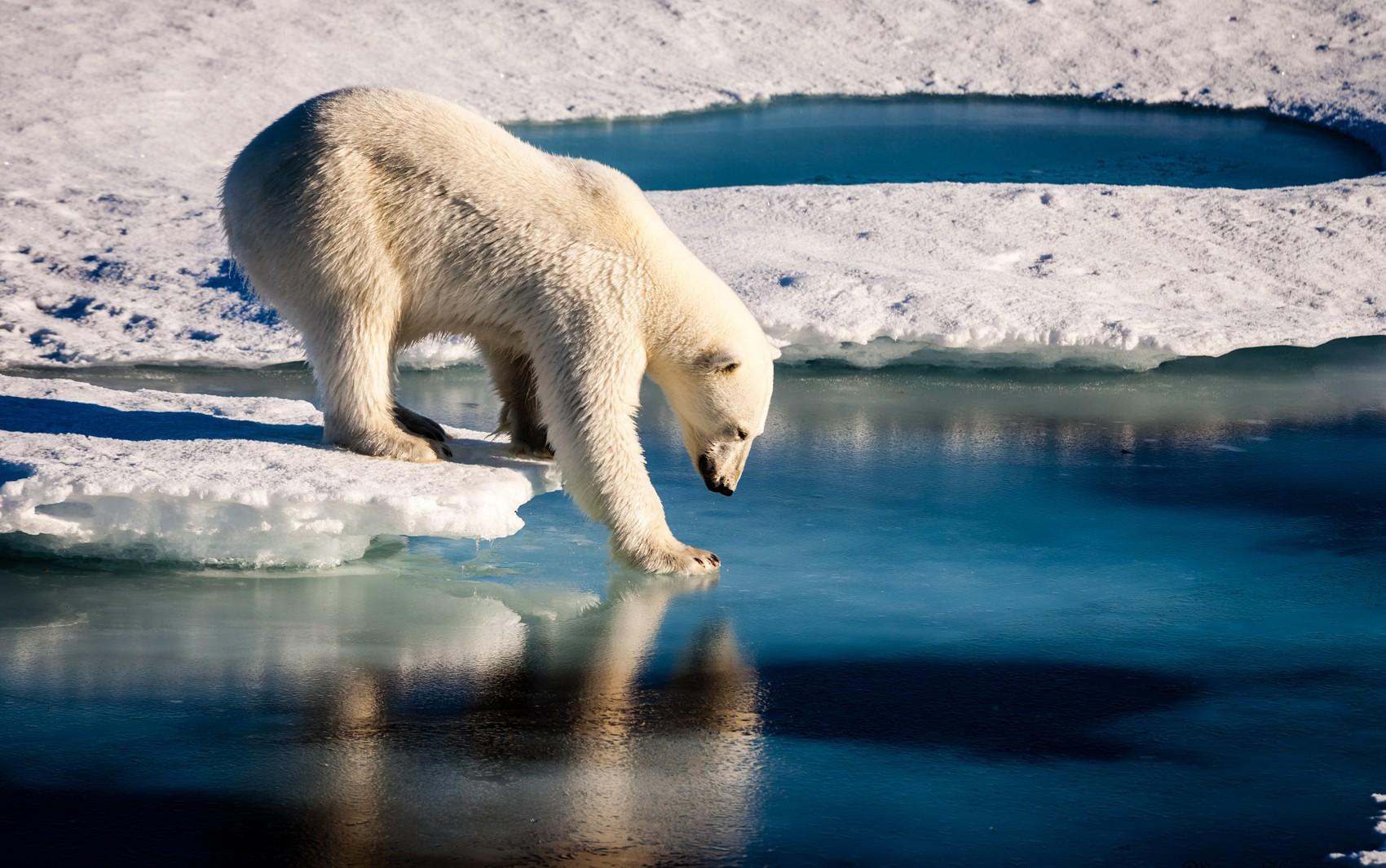 Photo of Caminhando sobre gelo fino